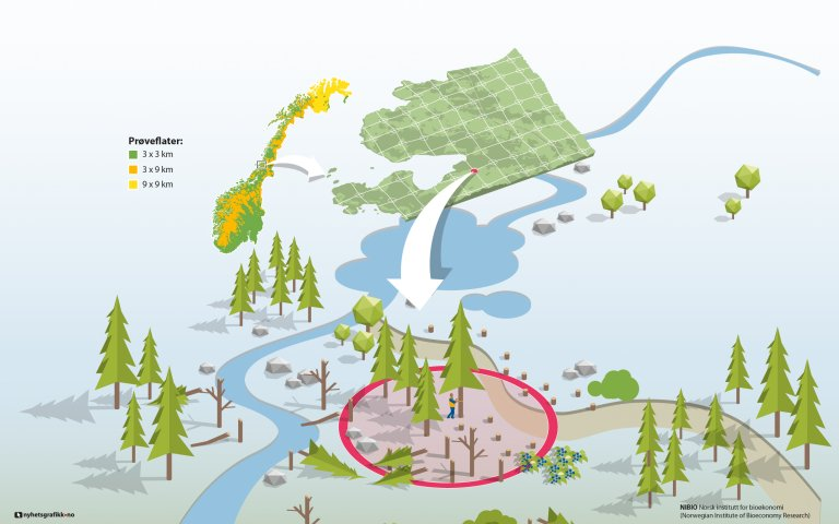 Landsskogtakseringen-2_RGB.jpg