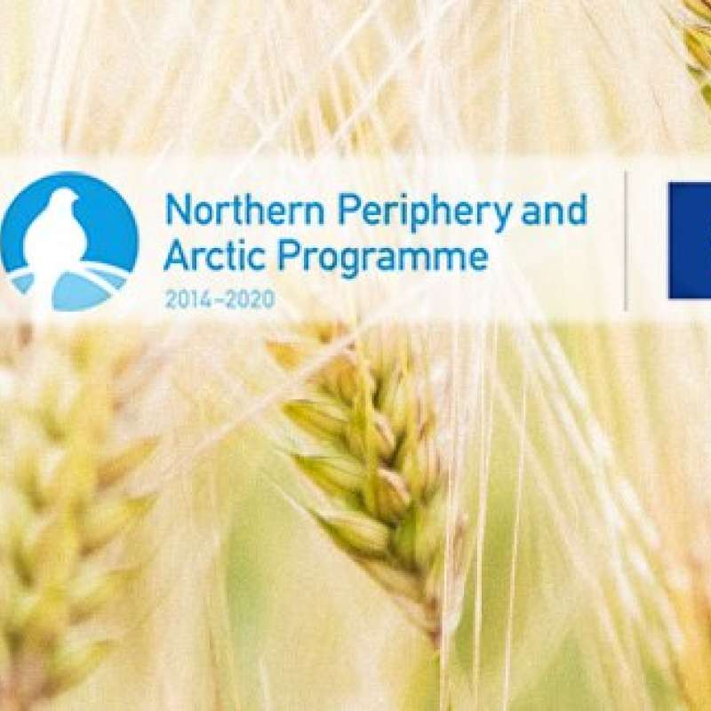 Northern Cereals_banner_13934793_10206832421785635_4785644776252176989_n